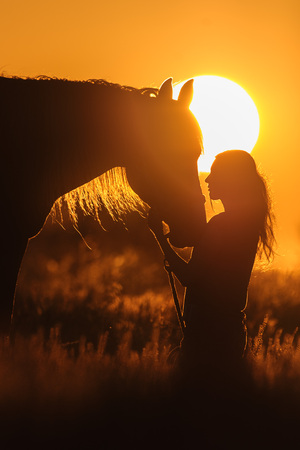 black cowgirl: Girl and horse silhouette at sunset