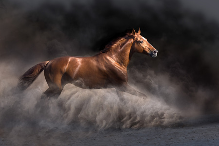 Red stallion run free in dark desert storm
