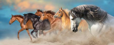 Horse herd run gallop in desert dust against dramatic sky Reklamní fotografie - 117968739
