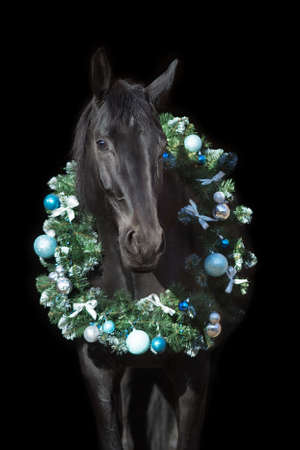 Black horse in christmas decor. New Year and Christmas horse