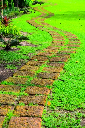 Thai style walkway in green garden like a snake photo