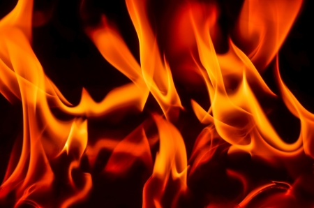 fire flames on a black background Stock Photo - 18737397