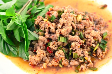 oriental food: Thai Spicy minced meat salad