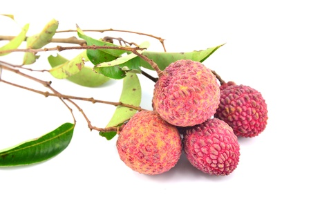 red lychee on white background  photo