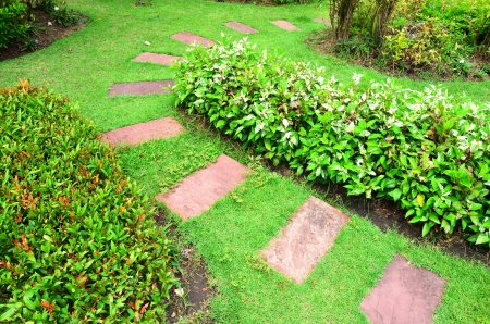 Stone walkway in the garden photo
