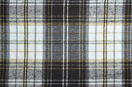 Seamless texture of fabric with plaid Stock Photo - 22169699