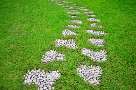 Stone Pathway in a Green Field photo