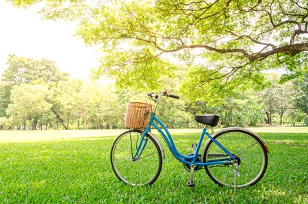 bicycle in green park