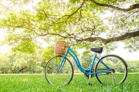 bicicleta: bicicleta en el parque verde
