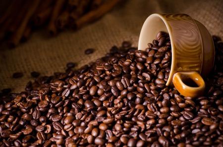 semilla de cafe: Granos de café tostado y una taza