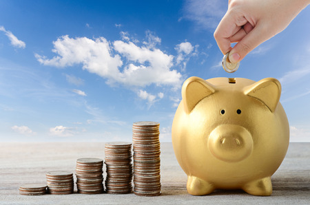 put coin into gold piggy bank , saving plan