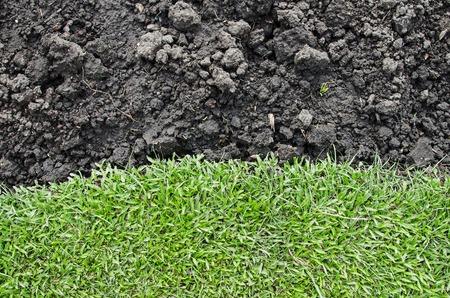black soil: green grass agent black soil for background