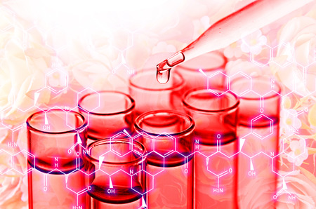 reagents: science laboratory test tubes Stock Photo