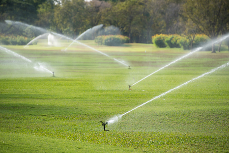 spay: watering in green grass field