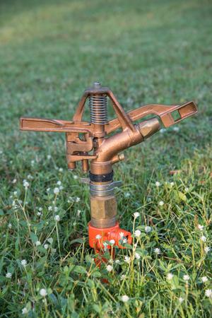 spay: sprinklers watering grass