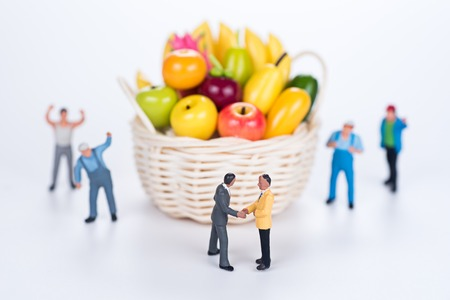 miniature team make agreement with fruit basket on white background Stock Photo