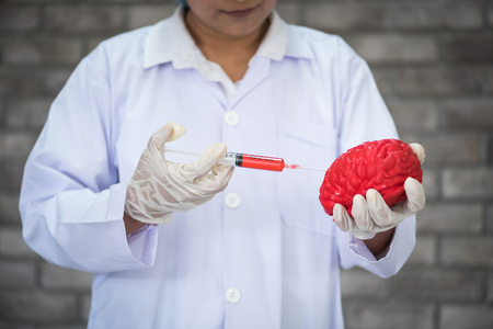 scientists use syringes injected red chemicals into the brain model