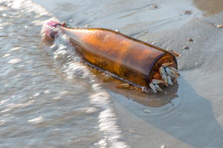 barnacle catch bottle2 photo