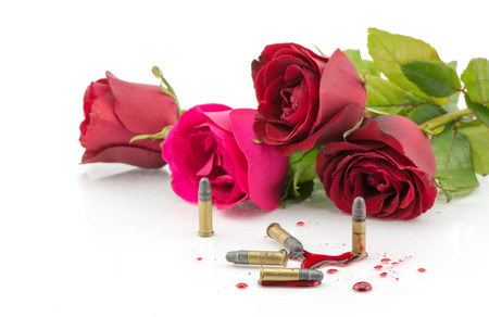 roses and blood: bullet on blood and red rose isolated on white background