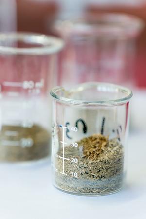 soil: Dry soil in beaker in laboretory