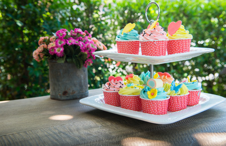 colorful of cup cakes on shelf dish on nature background