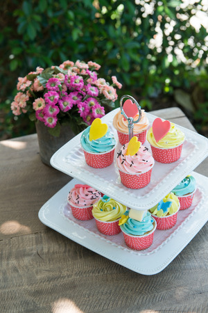 shelf ice: colorful of cup cakes on shelf dish on nature background Stock Photo