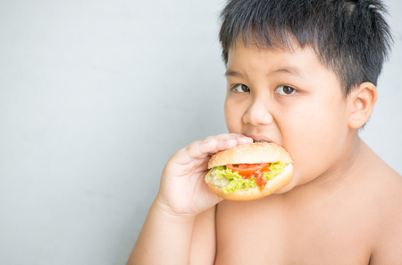 obese fat boy child eat chicken cheese hamburger