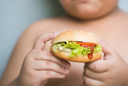 鶏チーズ ハンバーガー肥満脂肪の少年の手で