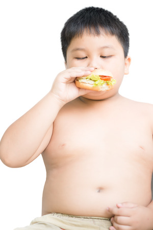 obese child: obese fat boy child eat chicken cheese hamburger isolated on white