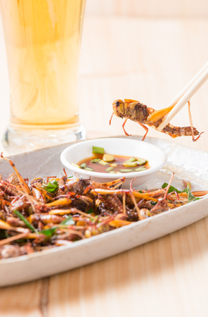 edible: Grasshopper fried in chopstick on wood background