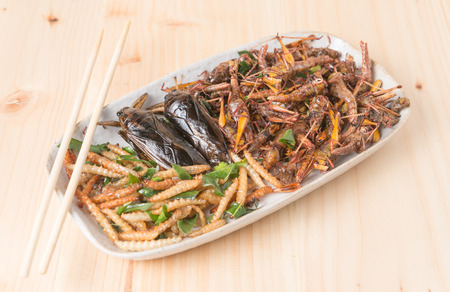 Mix insects fried on wooden background