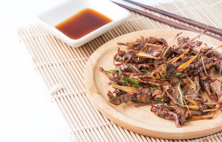 grasshoppers: fried grasshoppers isolated on white background, local food in Thailand.