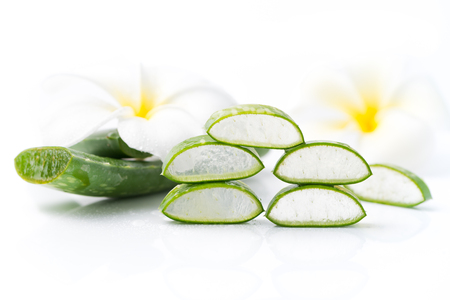 Aloe Vera sliced isolated on white background.