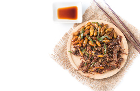 fried grasshoppers and Silkworm pupa isolated on white background on top view with copy space, local food in Thailand.