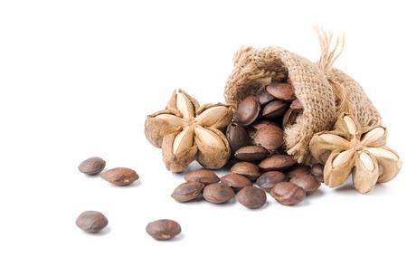 dried capsule seeds fruit of sacha-Inchi peanut isolated on white background