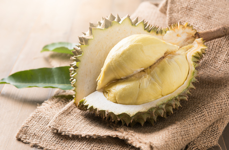 fresh durian on sack, king of fruit in thailand. Banco de Imagens