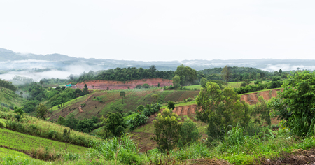 landuse: Landscape of Khao Kho district petchabun province Thailand, agricultural in deforestion area and landuse concept.