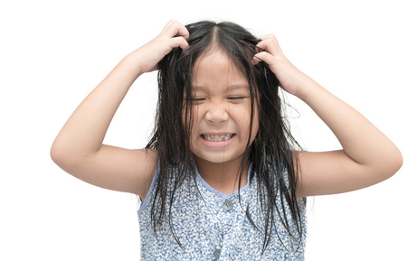girl itchy his hair on isolated white background, health care concept.