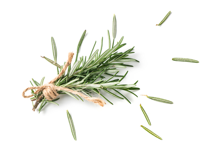 rosemary isolated on white background and top view, Spices for cook food.