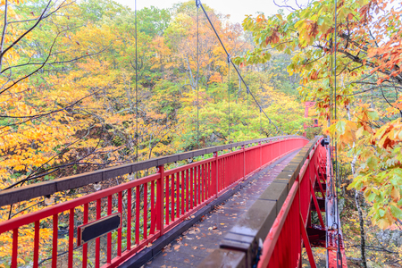 Jozankei Futami Suspension  Bridge and Autumn maple forest in Jozankei Onsen, The most popular tourist attraction to Hokkaido. Japan Archivio Fotografico - 111348175