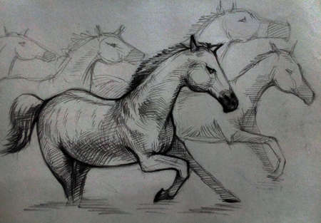 Art  Drawing Sketch out line   cute Running horse from Thailand Banco de Imagens