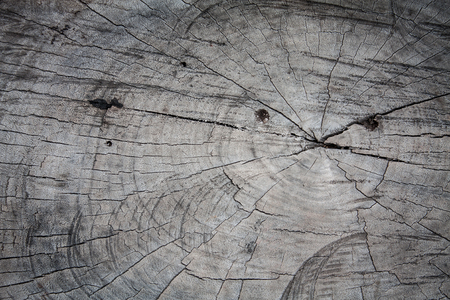 wood cut: Old wood cut texture background Stock Photo
