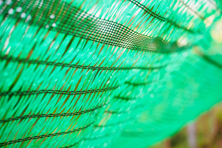 Close up Green Shading Net protect sun light Stock Photo