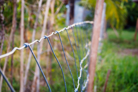 metal mesh: Metal fence wire and green grass