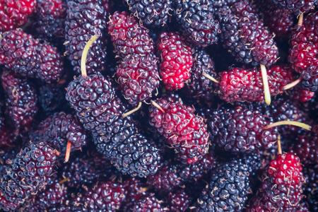 fresh mulberry closeup background