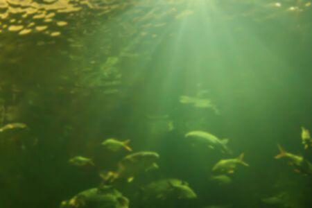 Underwater ocean abstract blur for background