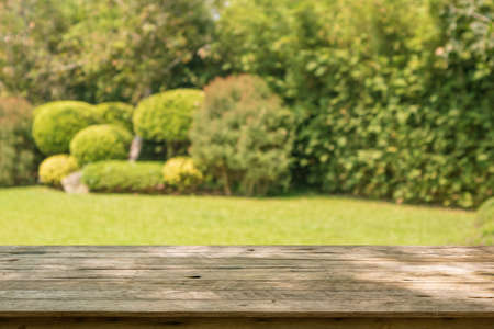 Empty wood table top with abstract blur park garden background