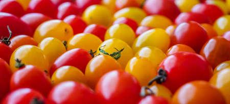 Red ripe organic tomato background