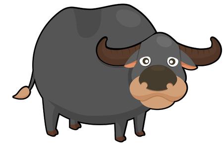 bullock animal: buffalo