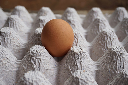 ingradient: Chicken egg in the package Stock Photo